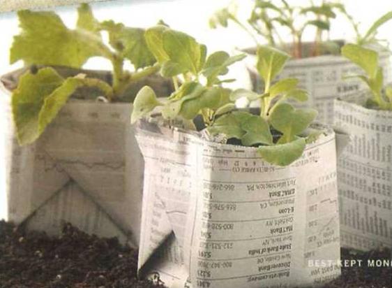 segredos-para-poupar-no-jardim-7