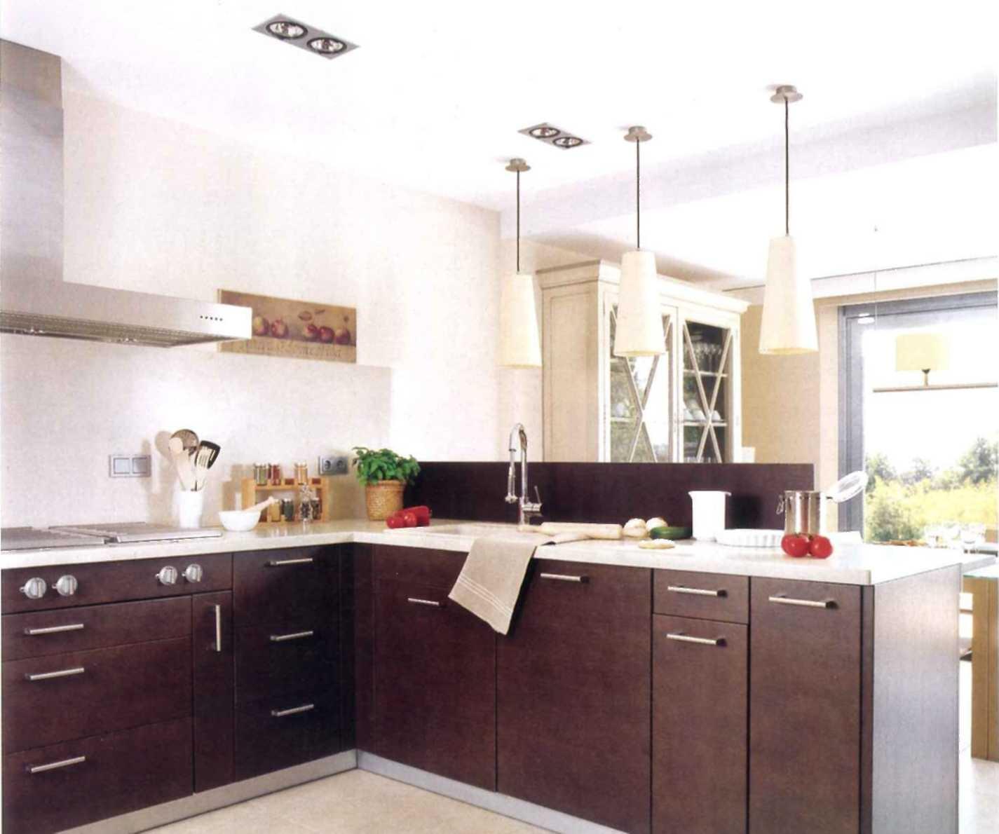 decoração de interiores, decoração cozinha - moveis cozinha wengué com divisoria na ilha