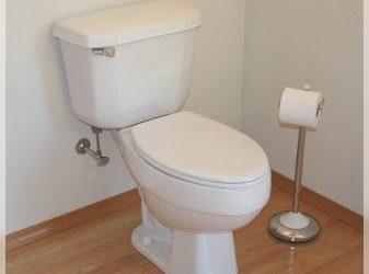 desentupir o banheiro