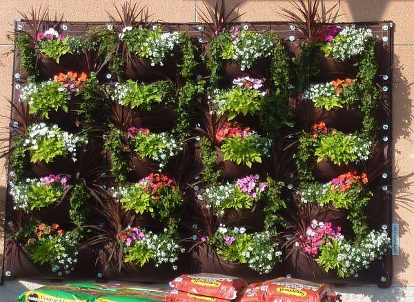ideias jardins verticais : ideias jardins verticais:Ideias inspiradoras e criativas para jardins verticais