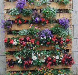 jardim vertical em paletes