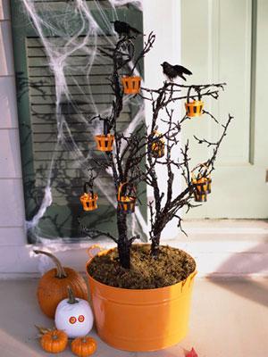 plantas-halloween