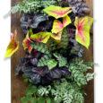 tela jardim vertical